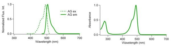 Fluoppi fluorescence characterisitcs