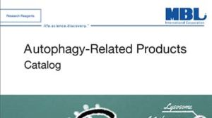 Autophagy-Related Products