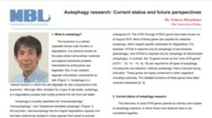 Autophagy Research