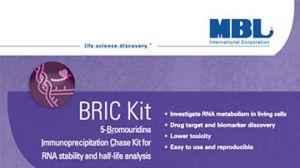 BRIC Kit