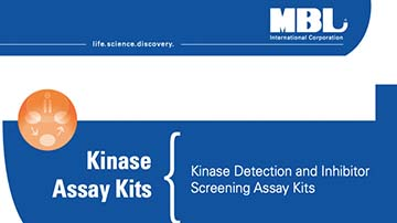 Kinase Assay Kits
