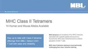 MHC Class II Tetramers
