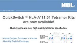 QuickSwitch™ HLA-A*11-01 tetramer kits