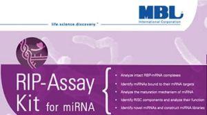 RIP-Assay Kit for miRNA