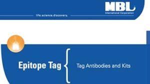 Tag Antibodies